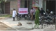 Phòng dịch tả lợn châu Phi ở Yên Dũng: Tập trung tuyên truyền, kiểm soát chặt đàn lợn