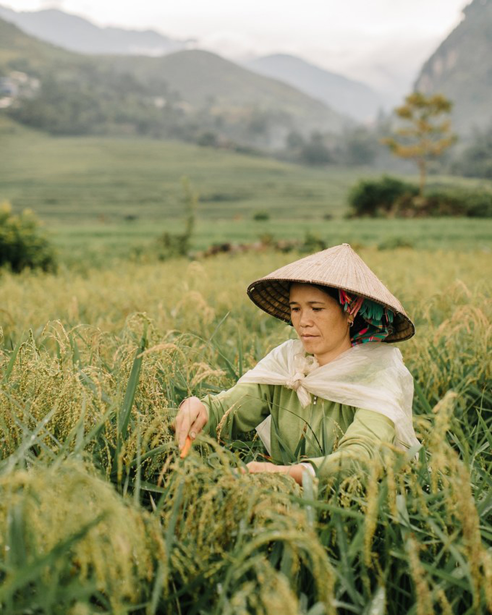 Life in northern Vietnam, Belgian travel photographer, Kevin Faingnaert, Southeast Asian gem, Vietnam, popular destination