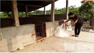 Lục Ngạn lập 3 chốt phòng, chống dịch tả lợn châu Phi