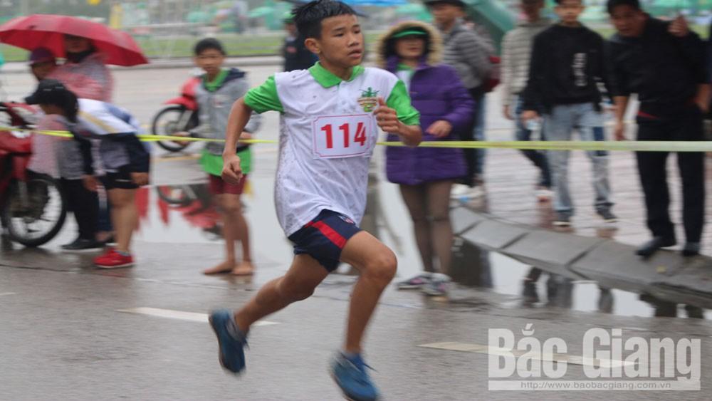 Việt dã Báo Bắc Giang; ngày hội đi bộ