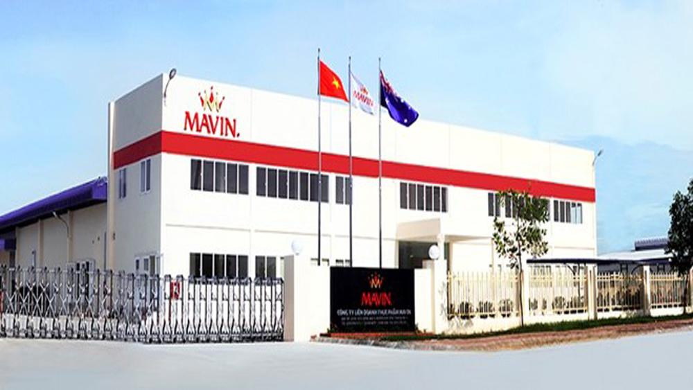 Mavin, food processing plant, Vietnam, Vietnam – Austria, joint venture, high-tech variety, animal feed warehouse, largest and modern plant