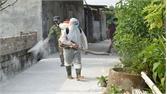 Hơn 800 lít hóa chất, 130 tấn vôi bột phòng dịch tả lợn châu Phi