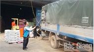 """Phòng, chống bệnh dịch tả lợn châu Phi: Nghiêm ngặt phòng dịch, trang trại lợn """"sống khỏe"""""""