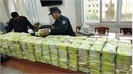 Triệt phá đường dây buôn bán ma túy lớn, thu giữ 300 kg chất ma túy