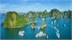Ha Long Bay a once-in-a-lifetime destination: US publication