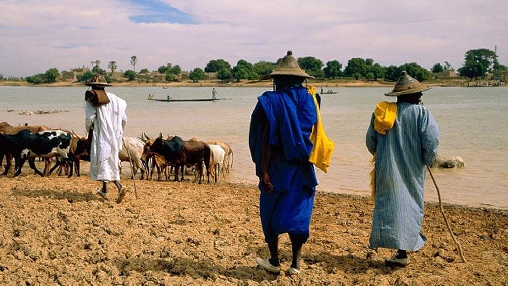 Tấn công đẫm máu ở Mali,  người thiệt mạng,  trang phục thợ săn Dongo