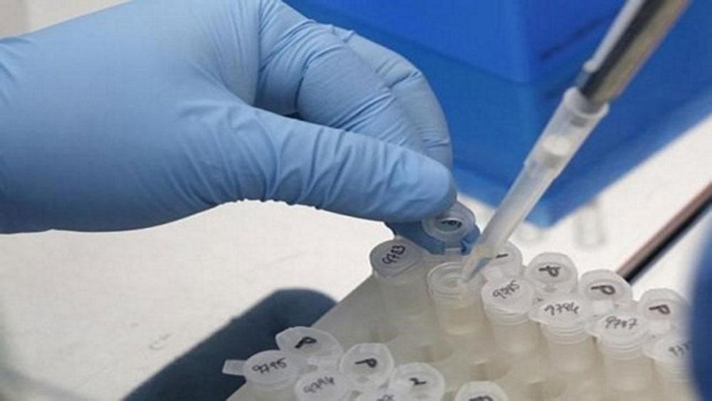 Việt Nam nghiên cứu vắcxin dịch tả lợn châu Phi