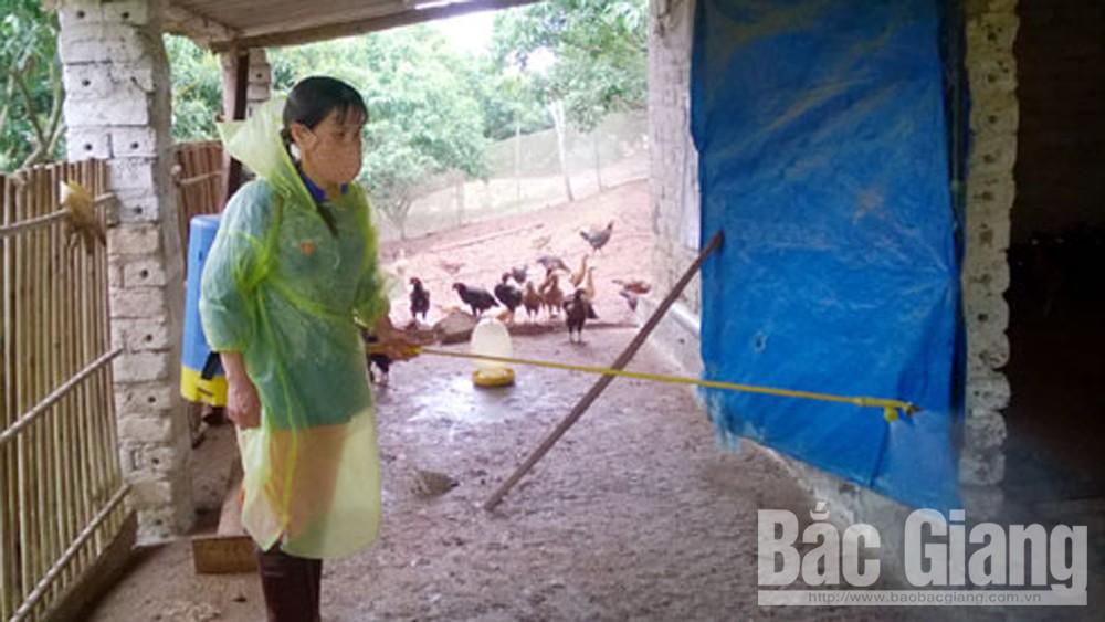 Yên Thế, tập trung phòng chống dịch bệnh trên đàn vật nuôi