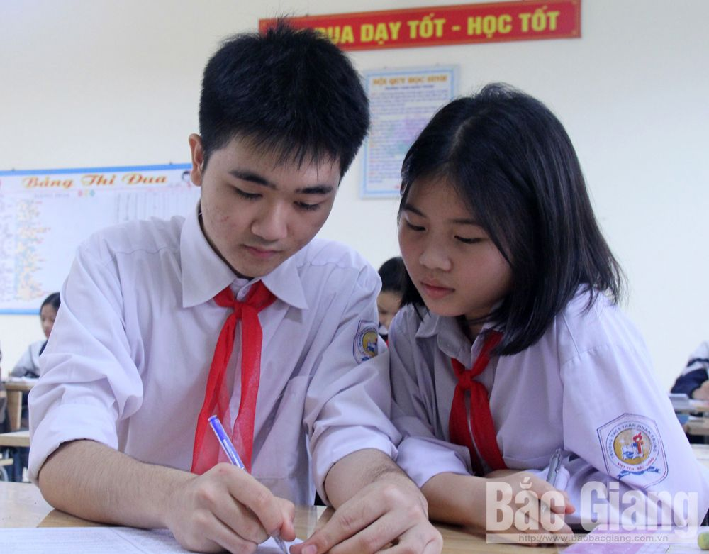 Nguyen Duc Viet, his secret, English studying,  Than Nhan Trung Secondary School, provincial contest, excellent students,