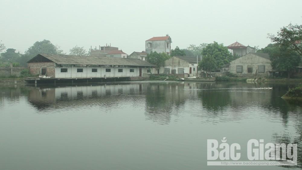 Phòng, chống dịch tả lợn Châu Phi, Hợp tác xã chăn nuôi, sản xuất, tiêu thụ lợn sạch Tân Yên, Huyện Tân Yên