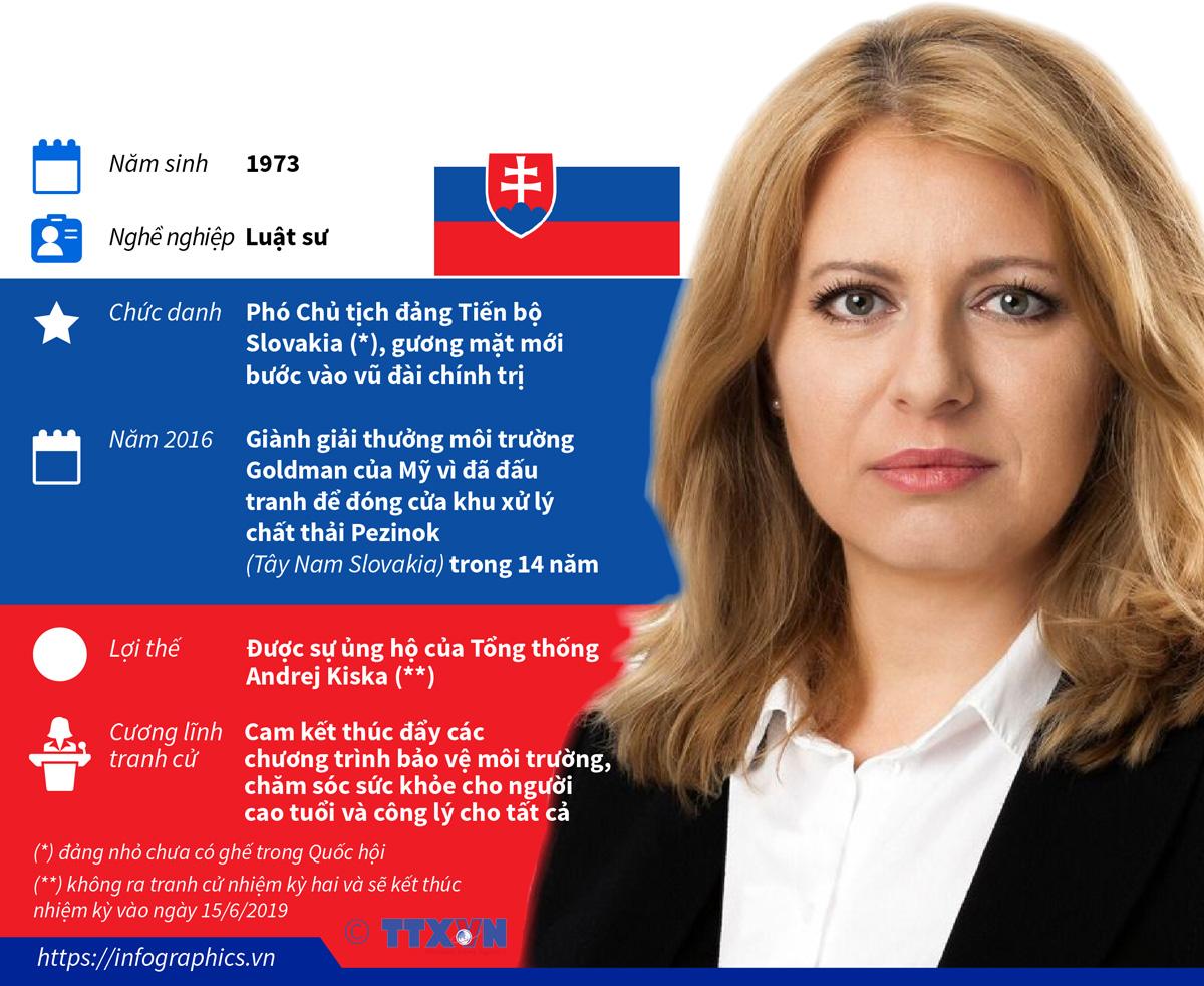 chính trị, ngoại giao, chân dung, nữ tổng thống đầu tiên, slovakia