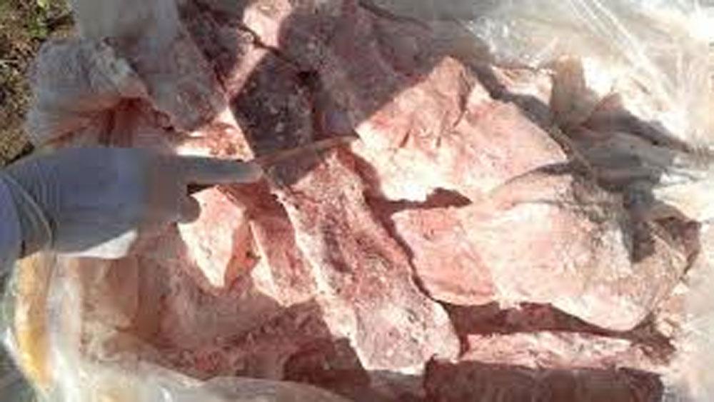 Bắt vụ vận chuyển 350kg nầm và thịt lợn bốc mùi hôi thối