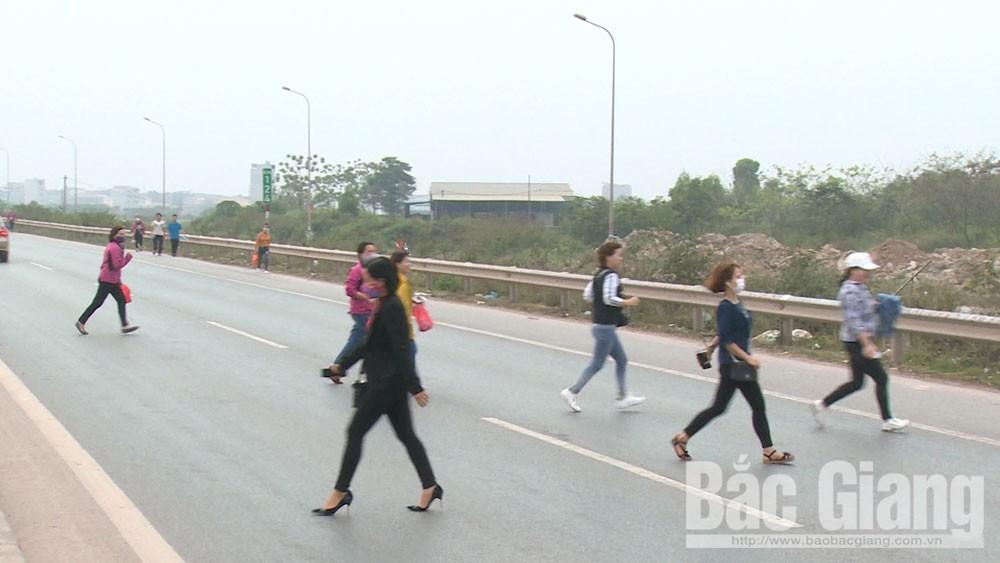 Người đi bộ ngang nhiên băng qua cao tốc bất chấp quy định cấm. Ảnh chụp tại khu vực gần KCN Vân Trung, đoạn qua xã Tăng Tiến (Việt Yên).