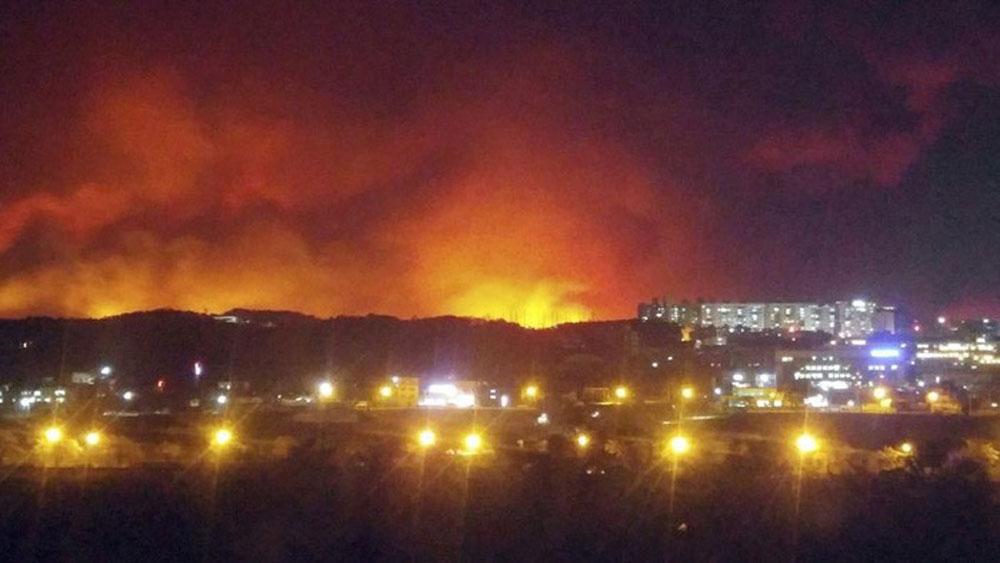 Tổng thống Hàn Quốc tuyên bố các khu vực chịu hỏa hoạn là vùng thảm họa đặc biệt