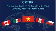 Những hàng hóa hưởng lợi lớn từ CPTPP khi xuất khẩu sang châu Mỹ