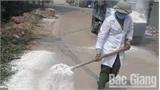 Chôn hủy 225 con lợn mắc bệnh dịch tả lợn châu Phi