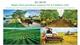 Major farm produce exports hit 4.2 billion USD