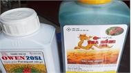 Quá thời hạn giải quyết hàng tồn dư, thuốc diệt cỏ chứa Paraquat vẫn được bán rộng rãi