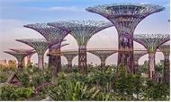 Singapore-đảo quốc rừng xanh
