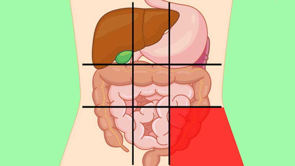 Nhận diện cơn đau qua vị trí nội tạng cơ thể