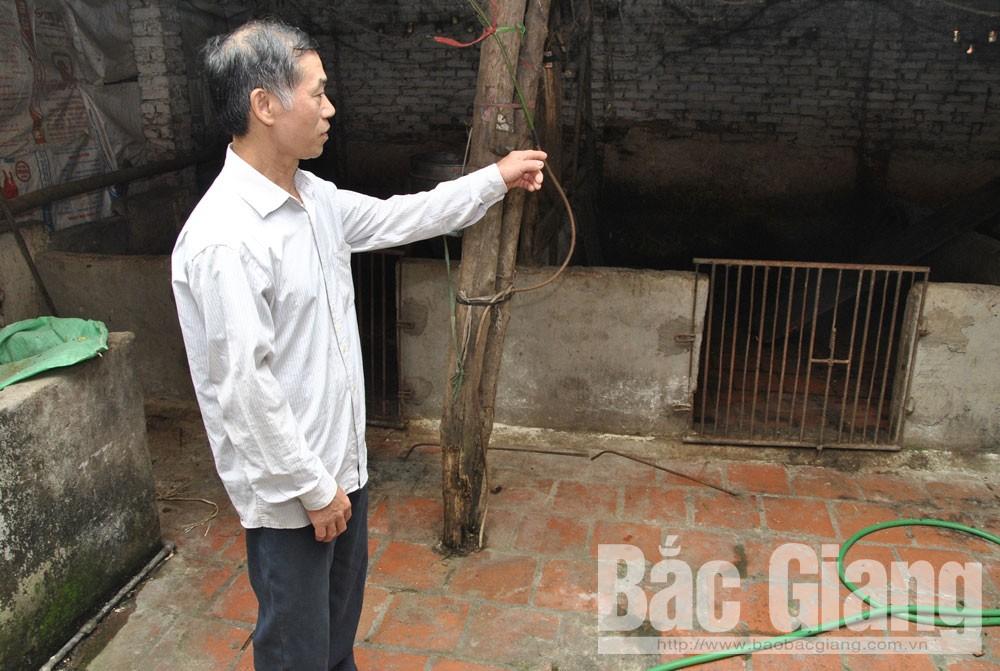 Hiệp Hòa phòng chống bệnh dịch tả lợn châu phi, Khắc phục hạn chế, tích cực dập dịch