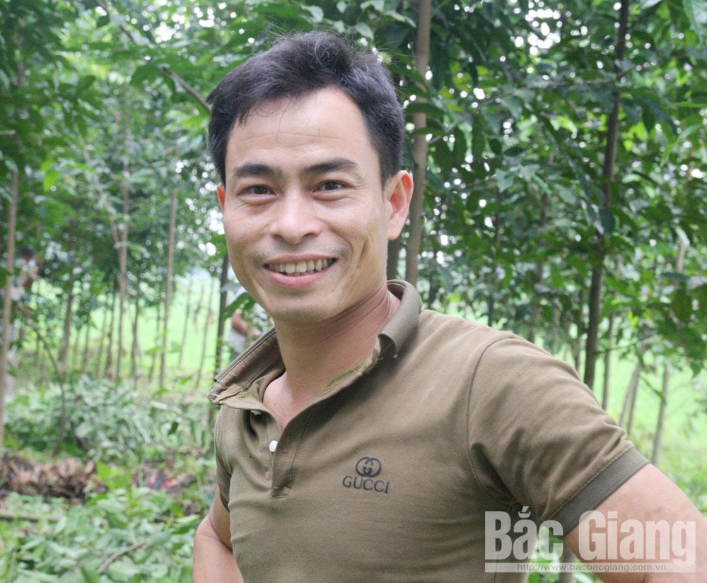 Tạ Tiến Tùng, Làm giàu, cây giống, thôn Vạn Thạch, xã Hoàng Vân, huyện Hiệp Hòa, việc làm ổn định, thu nhập cao