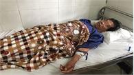 Hai người ở Lạng Sơn bị ngộ độc do uống rượu ngâm cây thuốc phiện