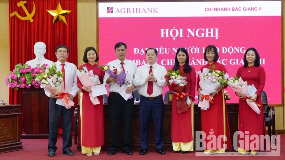 Agribank Chi nhánh Bắc Giang II, Tổng nguồn vốn, tăng trưởng, vay vốn, tín dụng