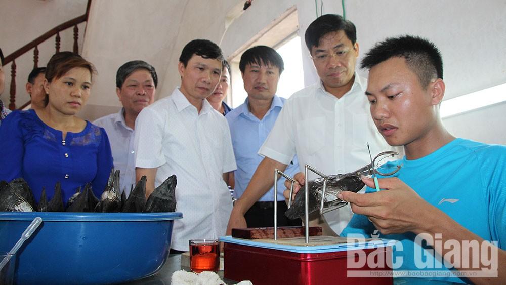 Phấn đấu đưa nông nghiệp Bắc Giang đứng đầu miền Bắc vào năm 2030