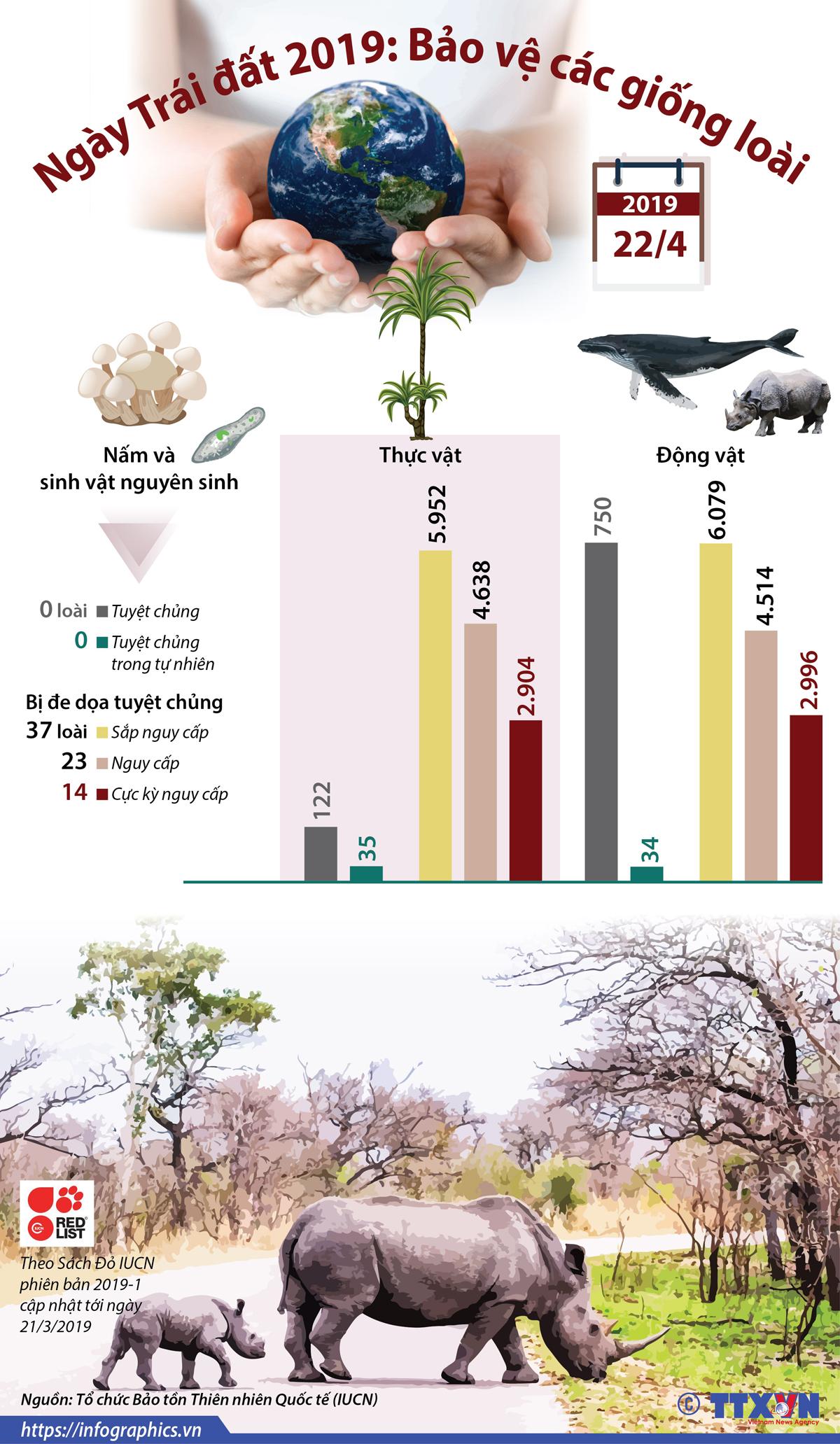 giáo dục, khoa học, ngày trái đất 2019, bảo vệ, các giống loài