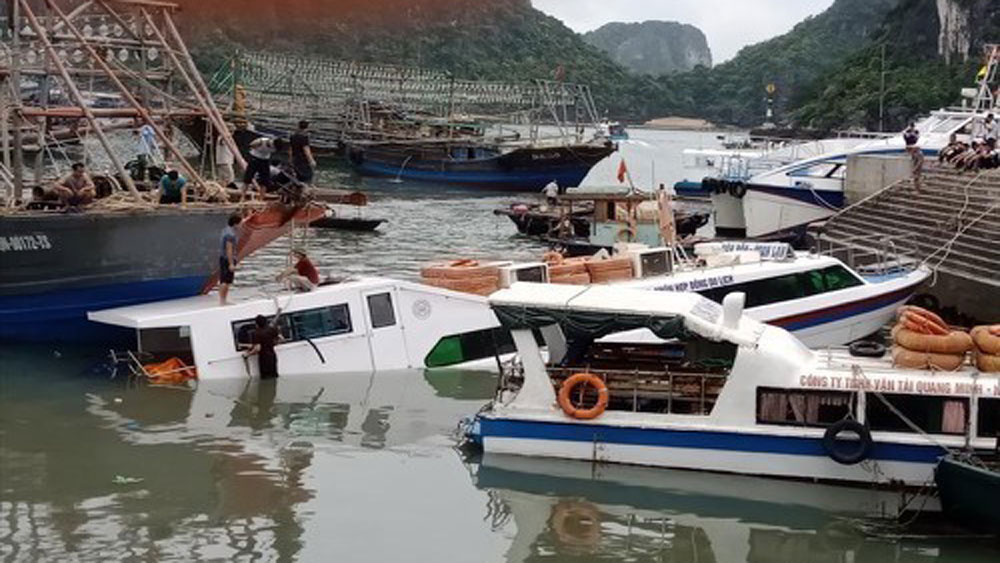 Xác định, nguyên nhân, chìm tàu chở khách, cảng Cái Rồng, Quảng Ninh