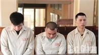 Mua bán, vận chuyển trái phép ma túy, mỗi bị cáo bị tuyên phạt 20 năm tù