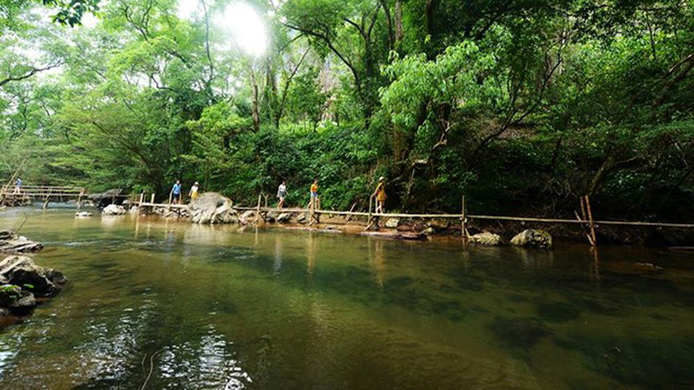 Ozo Treetop Park, new tourism product, Quang Binh province, world natural heritage site, adventure course