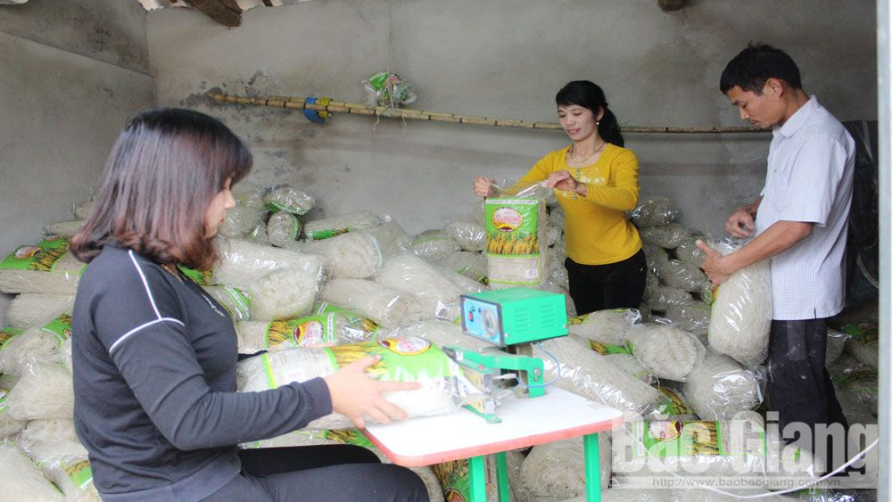 agricultural products, Bac Giang province, collective marks, geographical indications, farm produce, post-protection support, intellectual property, intellectual property