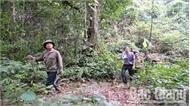 """""""Bảo vệ rừng là bảo vệ quê hương"""""""