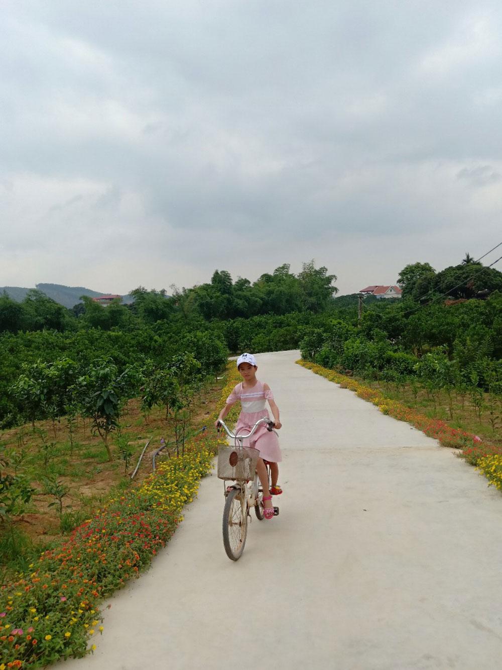 giao thông nông thôn, xi măng, Bắc Giang, Lục Ngạn