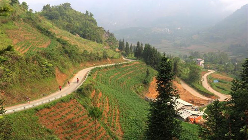 Over 1,000 join international marathon in Ha Giang