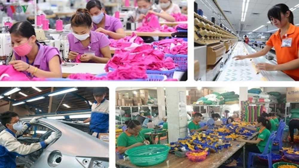 Quality products key to accessing CPTPP markets