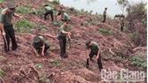 Tuổi trẻ Công an tỉnh Bắc Giang trồng cây gây rừng tại Lục Ngạn