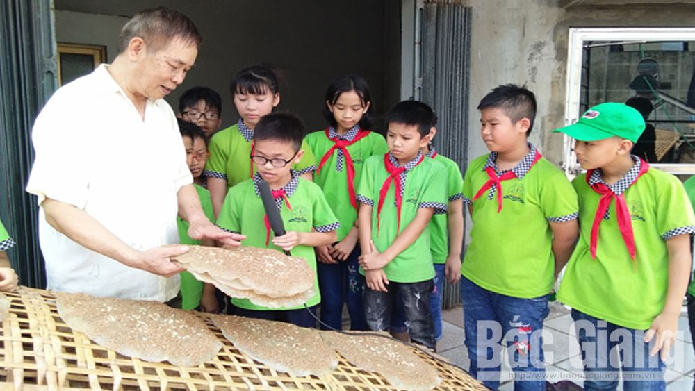 Nearly 11,000 students equipped with experience practice and life skills