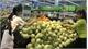 Week of Vietnamese goods in Thailand slated for September