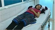 Lai Châu: Cả gia đình nhập viện do ăn nấm độc