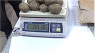 Hải quan TP Hồ Chí Minh phát hiện bưu phẩm gửi từ châu Âu có chứa ma túy