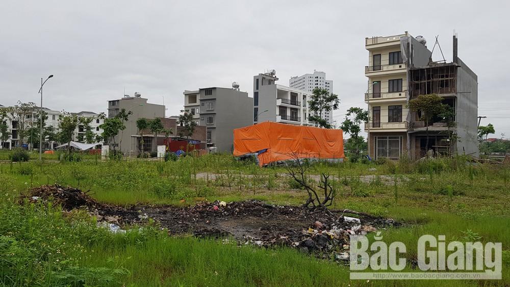 Thành phố Bắc Giang, Đốt rơm rác bừa bãi, Ô nhiễm môi trường, Thành phố Bắc Giang
