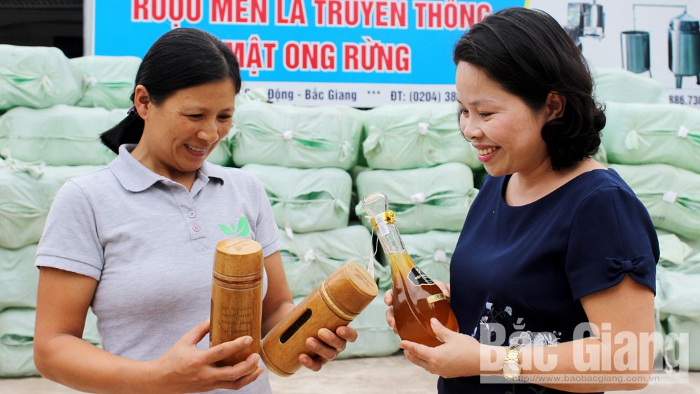 Linking to bring Bac Giang agricultural products to wholesale markets and supermarkets: Opportunities for quality products