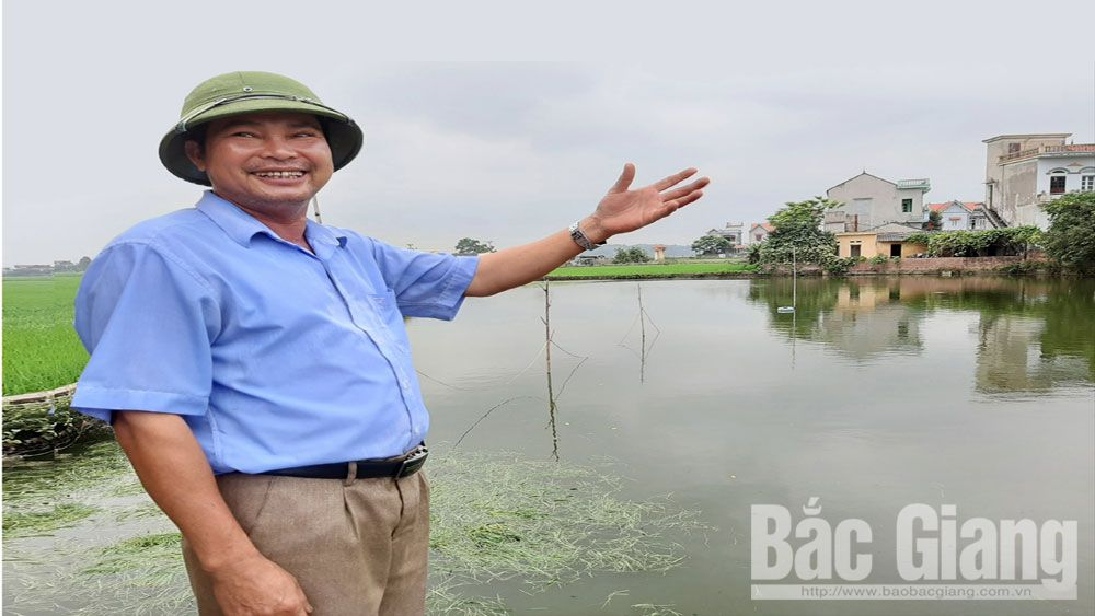 Vitality of fish breeding along Cau River