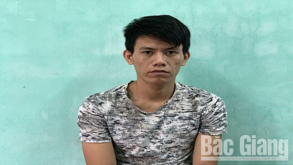 Đào Văn Tân, tỉnh Bắc Giang, Lạng Giang, trộm cắp, tài sản, trộm cắp tài sản, tiền án tiền sự,