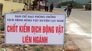 Lục Nam phát động Tháng cao điểm phòng, chống bệnh dịch tả lợn châu Phi