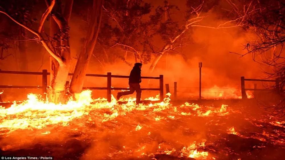 Mỹ, công bố, nguyên nhân, vụ cháy rừng kinh hoàng năm 2018