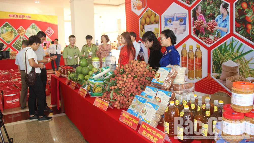 Tradesmen's suggestion, lychee consumption, Bac Giang province, lychee productivity, existing and new markets, Central and Southern regions, lychee quality and flavour